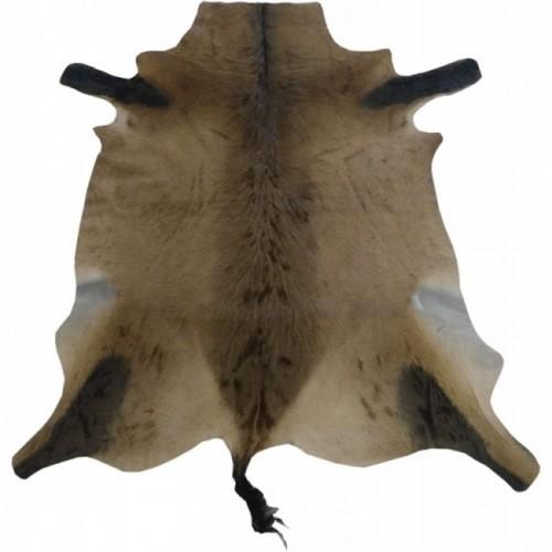 Hartebeest leather rug...
